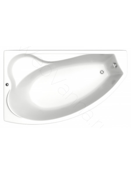 Акриловая ванна Bas Николь 170х100 L