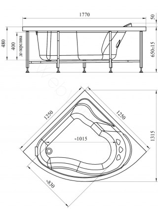 Гидромассажная ванна Wachter Альтея 125х125 Chrome